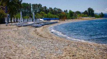 Διακήρυξη δημοπρασίας γιατην εκμίσθωση χώρου αιγιαλού και παραλίας στον Δήμο Νοτίου Πηλίου