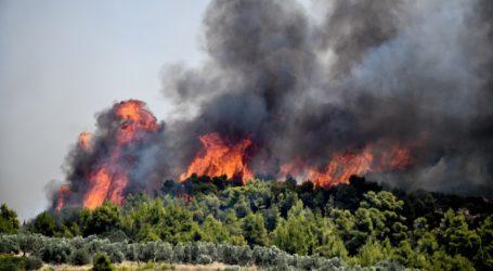 Μαίνεται η πυρκαγιά στην Κορινθία