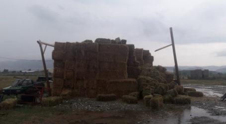 Ελασσόνα: Η «θεομηνία» βούλιαξε την επαρχία στο νερό – Ζημιές από ανεμοστρόβιλο στη Μαγούλα