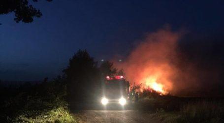 ΤΩΡΑ: Δύο φωτιές σε Βόλο και Ν. Ιωνία