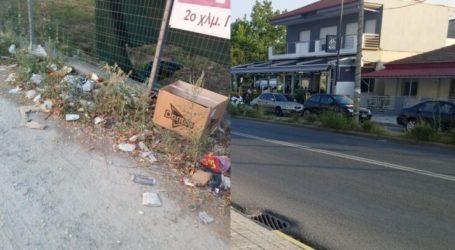Σκουπίδια και χόρτα ασχημαίνουν την Γιάννουλη (φωτο)