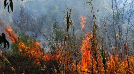 Υψηλός κίνδυνος πυρκαγιάς σήμερα στις Σποράδες