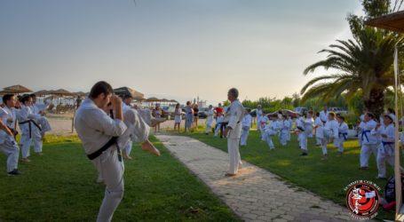 Μεγάλη επιτυχία για το Summer Course Shinkyokushinkai στον Βόλο [εικόνες]