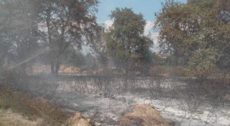 Στο παρά ένα απέφυγε την εκκένωση η Συκιά Ελασσόνας λόγω πυρκαγιάς