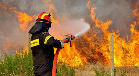 Φωτιά στη Ν. Αγχίαλο – Κινητοποίηση της Πυροσβεστικής