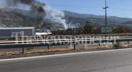 ΤΩΡΑ: Φωτιά σε αποθήκη πέλετ στον Βόλο – Δείτε εικόνες και βίντεο