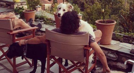 Πως γιόρτασε στο Πήλιο την Παγκόσμια ημέρα αγάπης σκύλων ο Βασίλης Χαραλαμπόπουλος