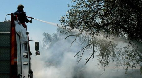 Κύπρος: Εκκενώνεται χωριό εξαιτίας πυρκαγιάς