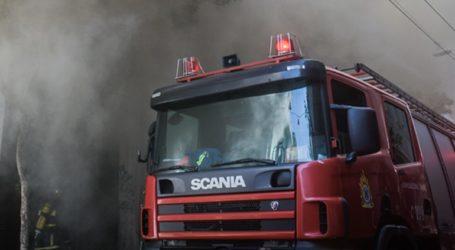 Πυρκαγιά στη Νίκαια Αττικής – Καίει σε χαμηλή βλάστηση