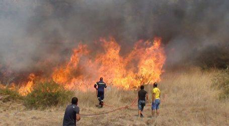 Οριοθετήθηκε η φωτιά στην Πέτρα Λέσβου
