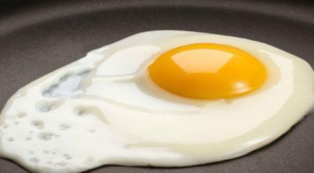 Συστήνεται Εθνική Διεπαγγελματική Οργάνωση Αυγού