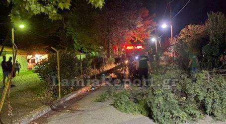 Δέντρο καταπλάκωσε γυναίκα στο ΚΑΑΥ Καραβομύλου