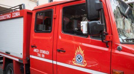Οριοθετήθηκε η φωτιά σε οικοπεδικούς χώρους στην Ανάβυσσο