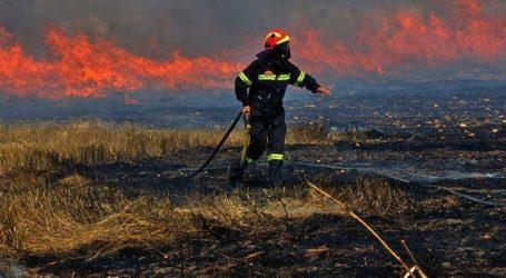 Εστίες φωτιάς από κεραυνούς στη Χαλκιδική