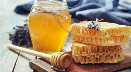 Ενισχύσεις 1,8 εκατ. ευρώ στους μελισσοκόμους των μικρών νησιών του Αιγαίου