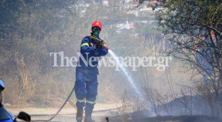 ΤΩΡΑ: Φωτιά στα Πευκάκια Βόλου