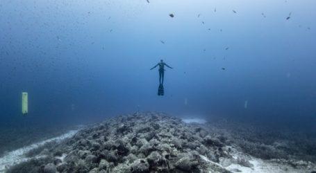 Ελεύθερη κατάδυση στο αρχαίο ναυάγιο της Περιστέρας Αλοννήσου – Συναρπαστικές εικόνες