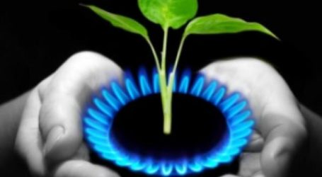 Λεωνίδας Καλαθάς: Φυσικό αέριο η οικονομικότερη επιλογή για την επιχείρησή σας