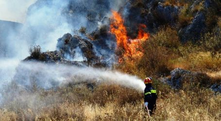Φωτιές σε Άγιο Ονούφριο Βόλου και Κανάλια Μαγνησίας