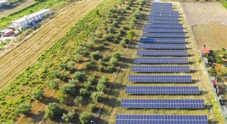 Πρωτιά για τη Λάρισα – Σε ΦΕΚ η απόφαση για τα φωτοβολταϊκά σε γη υψηλής παραγωγικότητας