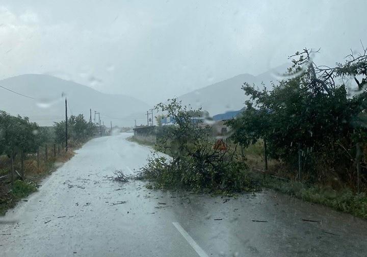 Έπεσαν δέντρα στο δρόμο έξω από το Αργυροπούλι