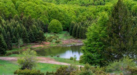 Λάρισα: Η άγνωστη λίμνη δίπλα στην Καλλιπεύκη που θυμίζει Ελβετία και ο «κρυμμένος θησαυρός» της (φωτο)