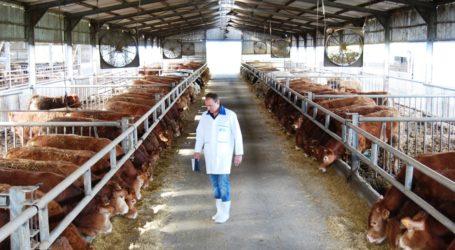 Μαγνησία: Τροποποίηση της νομοθεσίας αδειοδότησης σταυλικών εγκαταστάσεων