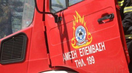 Καμπάνα σε Λαρισαίο γιατί έκαιγε ξερά χόρτα χωρίς την άδεια της Πυροσβεστικής