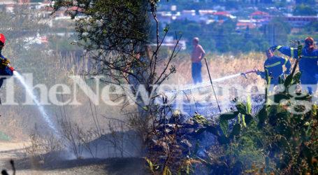 Τώρα: Φωτιά πάνω από τον Περιφερειακό του Βόλου – Δείτε εικόνες