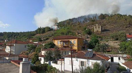 Ολονύχτια μάχη με τις φλόγες στο δάσος της Τσαριτσάνης – Πάνω από 40 πυροσβέστες και δύο καναντέρ (φωτό)