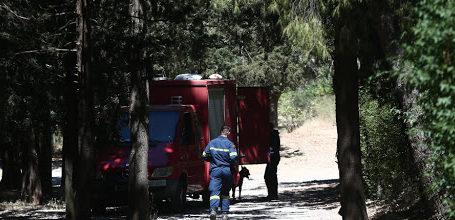 Πήλιο: Περιπέτεια για ζευγάρι που χάθηκε στο δάσος