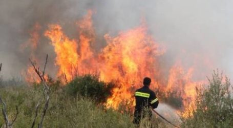 Αλμυρός: Έκοβε μέταλλα και προκάλεσε πυρκαγιά