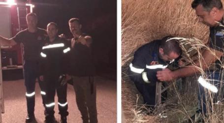 Βόλος: Επιχείρηση διάσωσης σκύλου που έπεσε σε υπόνομο 4 μέτρων [βίντεο]