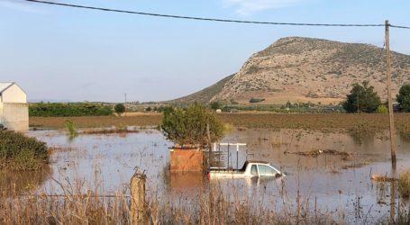 Λιακούλη: «Η ζωή στα Φάρσαλα, σταμάτησε στο χθες…»