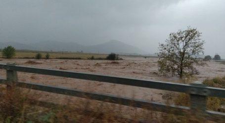 «Ιανός»: Εικόνες καταστροφής στα Φάρσαλα – Μεγάλες ζημιές και σε καλλιέργειες (φωτο – βίντεο)
