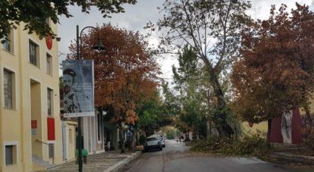 Βόλος: Κόπηκε μεγάλο κλαδί στα Παλαιά και έφραξε τον δρόμο