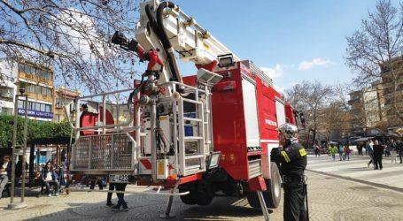 Βολιώτισσα σκαρφάλωσε και εγκλωβίστηκε σε δέντρο – Επιχείρηση της Πυροσβεστικής