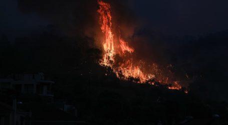 Πυρκαγιά στα Δικαστικά Μαραθώνα