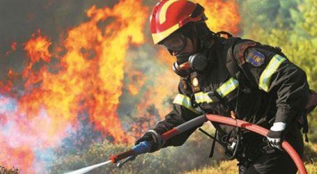 Σε εξέλιξη φωτιά στην περιοχή Ναρθάκι του Δήμου Φαρσάλων