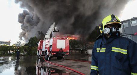 Πολύ υψηλός ο κίνδυνος πυρκαγιάς την Παρασκευή σε εννέα περιφέρειες