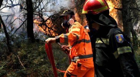 Σε εξέλιξη πυρκαγιά σε δασική έκταση στο Σοφικό Κορινθίας
