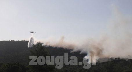 Κλιμάκιο Πυροσβεστικής και Αστυνομίας στο Σοφικό Κορινθίας για τα αίτια της πυρκαγιάς