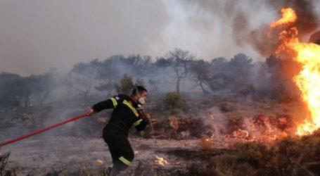 Φωτιά στην περιοχή Άγιος Νίκων στη Δυτική Μάνη