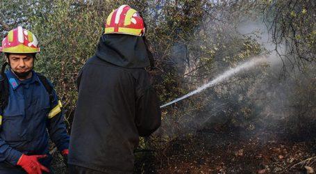 Πολύ υψηλός σήμερα ο κίνδυνος πυρκαγιάς στα ανατολικά και την Αττική