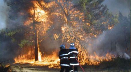 Πυρκαγιά στην περιοχή Ξηρόκαμπος της Νεμέας