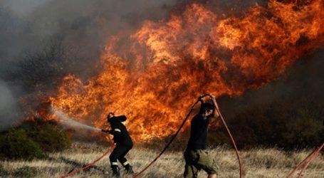 Υπό μερικό έλεγχο η φωτιά στον Ξηρόκαμπο Νεμέας