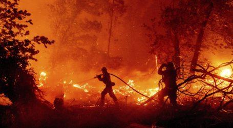Οι πυρκαγιές έχουν κάψει περισσότερα από δύο εκατ. στρέμματα