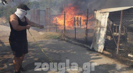 Επί ποδός όλο το βράδυ η πυροσβεστικές δυνάμεις στην Ανάβυσσο