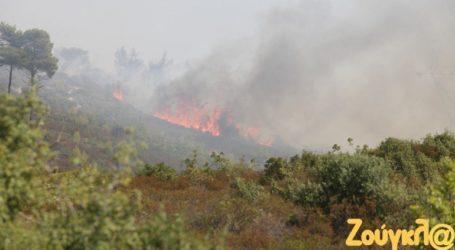 Σε χώρους φιλοξενίας όσοι εγκατέλειψαν τα σπίτια τους από την πυρκαγιά στα Καλύβια