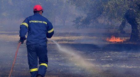 Υπό έλεγχο και χωρίς ενεργό μέτωπο η πυρκαγιά στον Δήμο Σαρωνικού